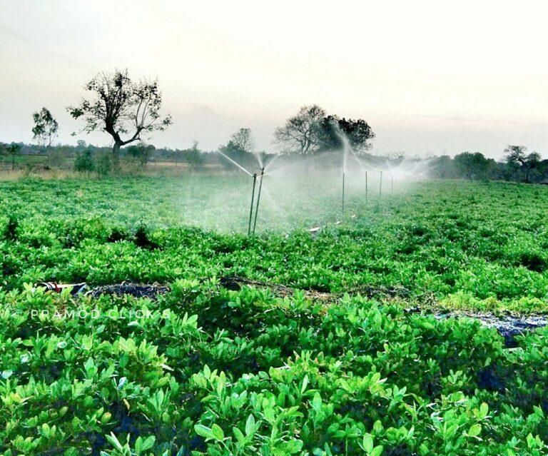 krushi utpadan yojana कृषी यांत्रिकीकरण योजना | भाऊसाहेब फुंडकर फळबाग योजना