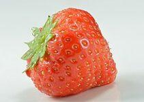 Strawberry Farming in Marathi स्ट्रॉबेरी शेती लागवड